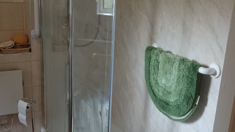 Walk in shower with green carpet hanging from handrails
